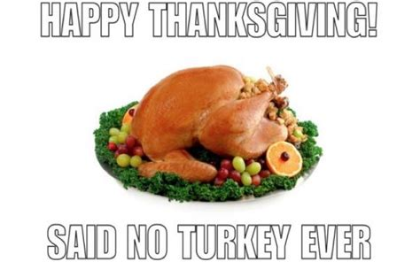 Thanksgiving Turkey Meme - thanksgiving memes