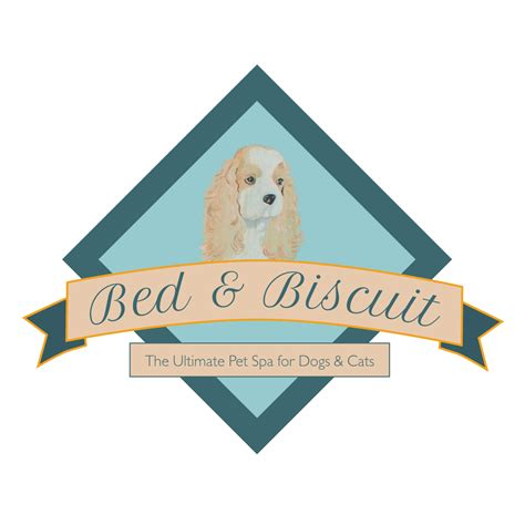 bed and biscuit bed and biscuit pet spa the ultimate pet spa for dogs cats