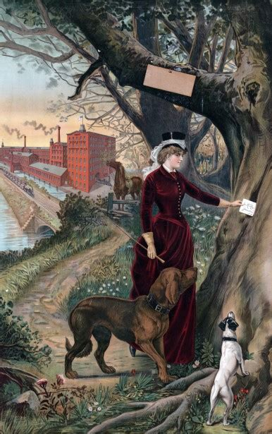 woman dogs painting  stock photo public domain pictures