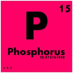 015 phosphorus periodic table of elements study