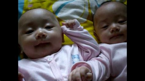Bayi Kembar Lucu Bayi Kembar Lucu