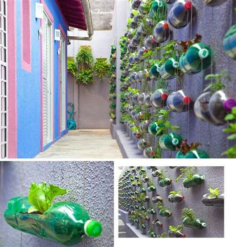 Gardening Using Plastic Bottles Eylf Pinterest View Image   gardening using plastic bottles eylf pinterest