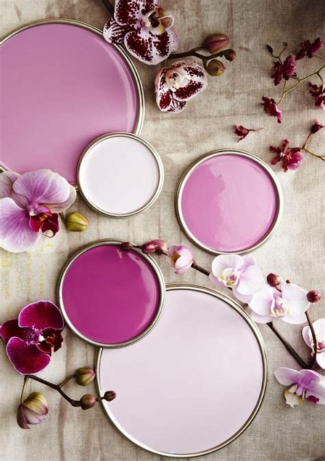 radiant orchid color radiant orchid pantone color of the year zen of zada