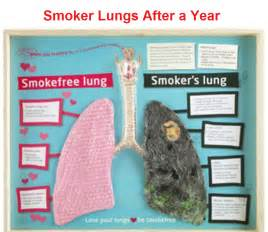 Who Am I After 5 Years From Now Essay by Smokers Lungs Cancer