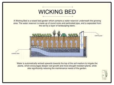 wicking garden bed wicking bed technology images