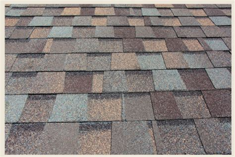 colorfully behr speaking  roof colors