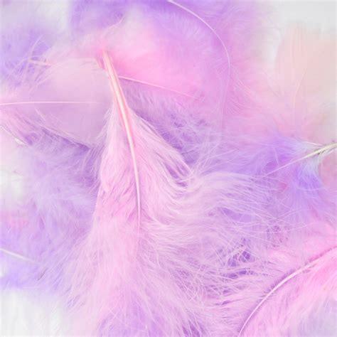 Packaged Feathers Packaged Craft Feathers Packaged Pink Fluffy Lights