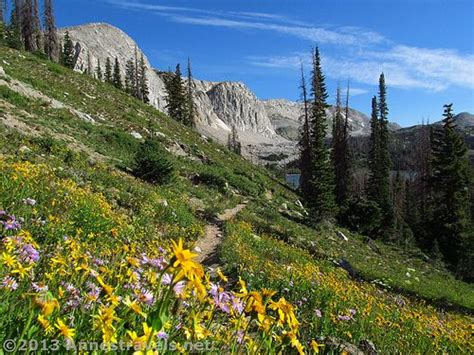 Wyoming Wildflowers The Beginning 26 best view junkie hikes midwest images on