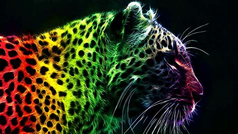 colorful leopard wallpaper colorful leopard background 18418 1920x1080 px