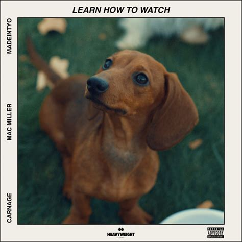 how to learn ecouter carnage learn how to feat mac miller and madeintyo un titre diffus 233