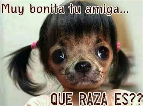 Risa Meme - jajajaja risa meme perro haha pinterest meme
