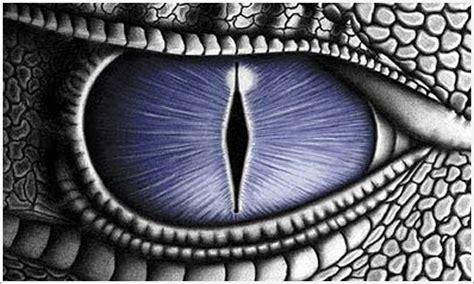 imagenes ojos de dragon saint seiya revolutions ellessar de dragon vs angeluzm
