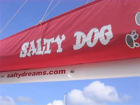 cumpleaños en catamaran puerto rico the salty dog catamaran fotograf 237 a de salty dog catamaran