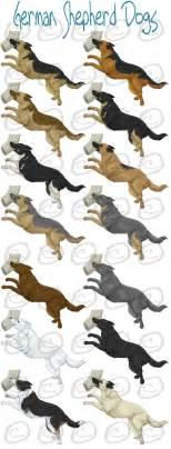 german shepherd color chart german shepherd dogs by dalmatianluver on deviantart