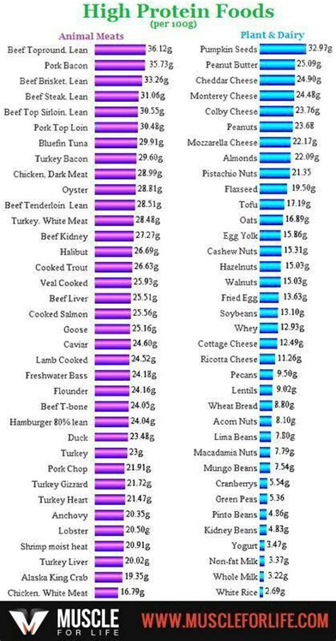 protein chart protein chart health tips