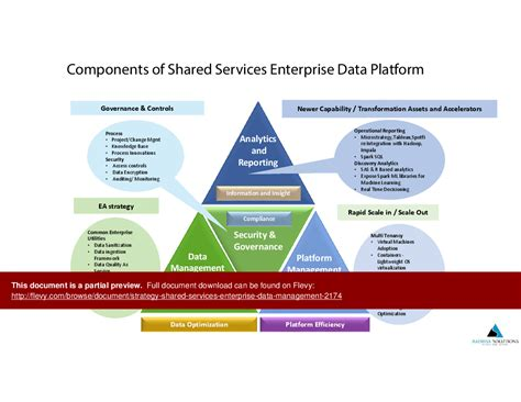data management strategy template shared services data management strategy big data bi