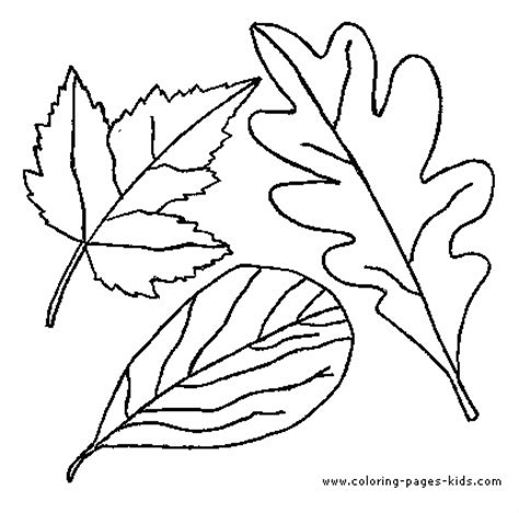 green leaf coloring pages leaf color page