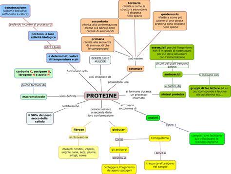 alimentazione senza proteine animali senza titolo 1