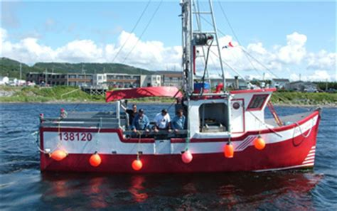 lowe boats newfoundland welcome to fishermen s voice