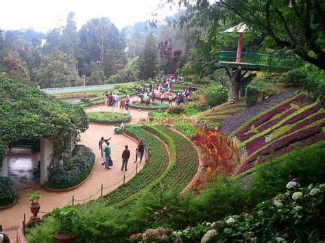 Discover The Must See Places In Ooty A Tour Guide A Visit To A Botanical Garden
