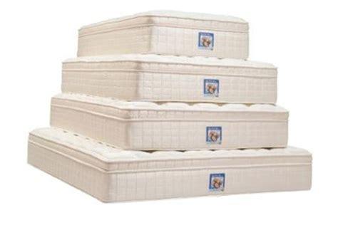 mattress 6 months denver mattress reviews consumer reports