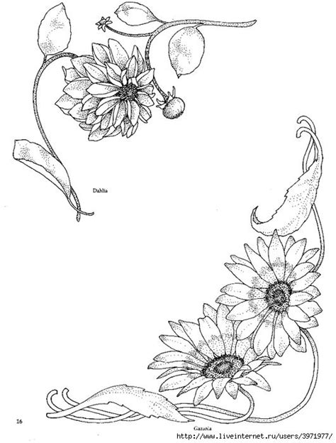 sunflower corner border sketch coloring page