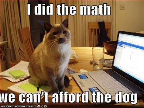 Accountant Dog Meme - funny dog pictures with quotes funny dog picture puppy