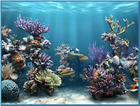 live screensavers for windows live aquarium hd screensaver download free