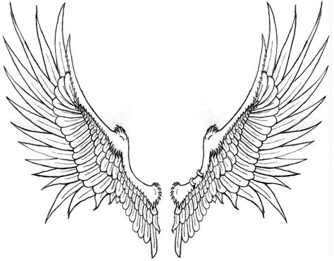Brack S Wings For Tattoo By Katryn Noquisi On Deviantart Wing Designs