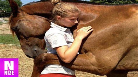tiere beim decken unglaubliche tiere die menschen das leben gerettet haben