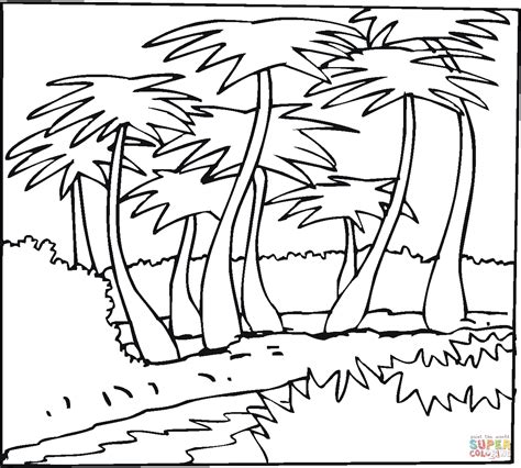 coloring page of a coconut tree coconut palms outline coloring page free printable