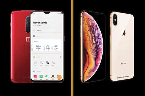 apple iphone xs vs oneplus 6t which one is worth the wait news18