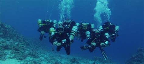 aventura en el mar 8427204132 un nuevejuliense particip 243 de una aventura en el mar rojo