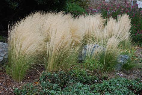 Que Peut On Planter En Septembre by Que Faire Au Jardin En Octobre Maison Design Apsip