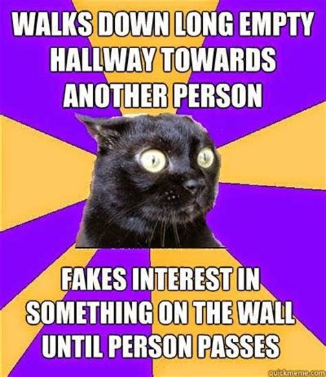 Awkward Cat Meme - 17 best ideas about awkward meme on pinterest dora funny