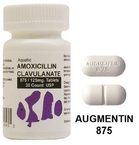 Amoxicillin 875 While Taking Detox Pils by Amoxicillin 875 Pharmacist