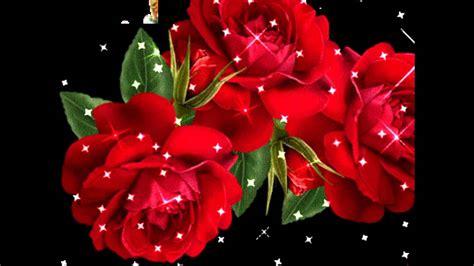 imagenes d rosas hermosas rosas hermosas para ti youtube