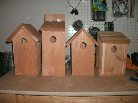 blue jay bird house plans bird house plans for a blue jay