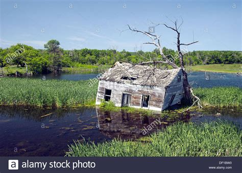 an abandoned flooded cottage near kelwood manitoba canada stock photo royalty free image