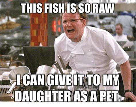 Chef Gordon Ramsay Meme - the best chef ramsay memes that capture his endless talent