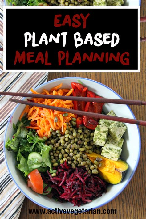 healthy and easy 100 plant based and nutrient dense recipes books 100 plant based food diet simple plant based meal