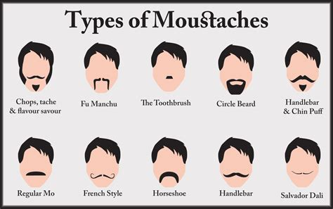types of types of mustaches freshfood