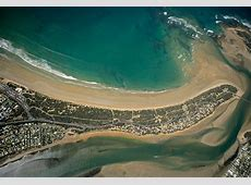 Protect the Ocean Grove spit from invasive weeds - Active ... Healthy Balance