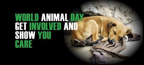 Animal World 4 world animal day 4 october