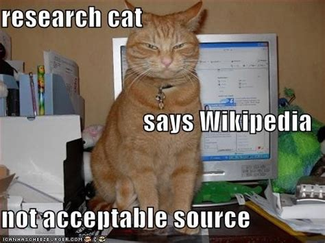 Memes Wiki - favorite college memes from csu online