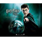 Download The Harry Potter 1 Wallpaper