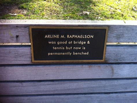 park bench plaques 9 hilarious park bench memorial plaques pictures huffpost uk