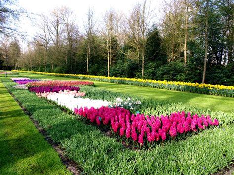 tulipani in giardino itinerari verdi keukenhof il giardino dei tulipani