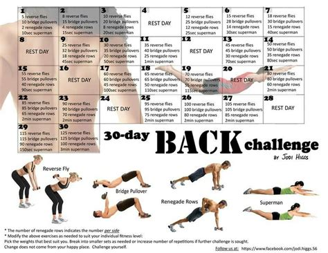 30 day workout challenge 30 day back challenge by jodi higgs workouts