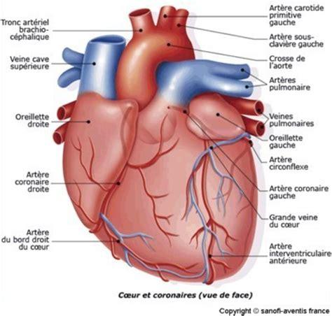 75 infos sant 233 angine de poitrine angor